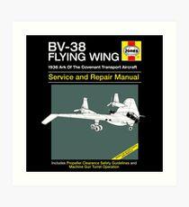BV-38 Raiders Service and Repair Manual Art Print