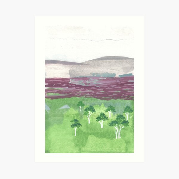 Australian landscape with white trees Art Print