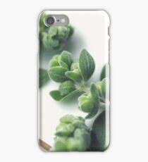 Marjoram iPhone Case/Skin