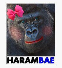 Harambae Photographic Print