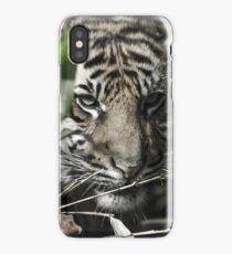 Antique Tiger  iPhone Case/Skin