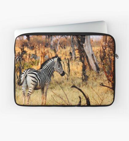 Zebras at sunset Laptop Sleeve