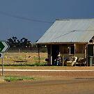 Outback Australia siesta by Bryan Cossart
