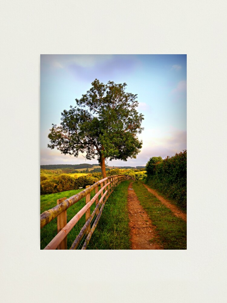 Alternate view of Follow The Path Photographic Print