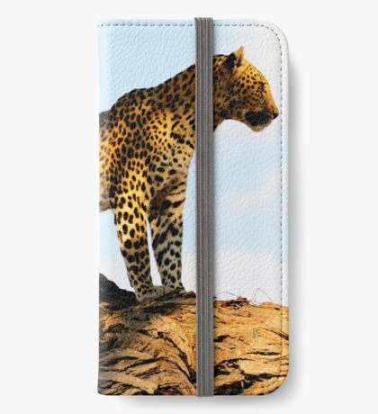 Lookout iPhone Wallet