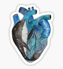Blue human heart with a whale inside Sticker