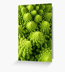 Romanesco broccoli (Brassica oleracea), close-up shot Greeting Card
