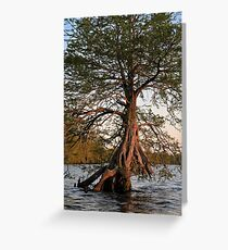 Truncated Greeting Card