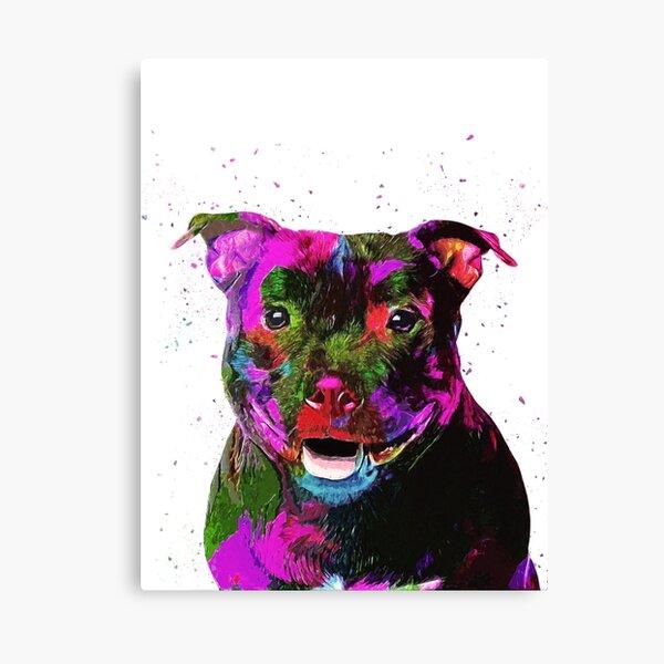 Staffordshire Bull Terrier Pop Art Portrait Canvas Print