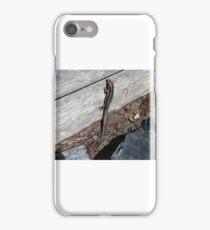 Eastern Water Skink - Blue Mountains iPhone Case/Skin