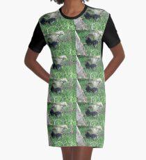 Australian brushturkey Graphic T-Shirt Dress