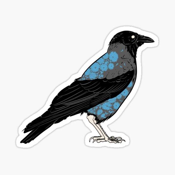 Corvus cornix Sticker