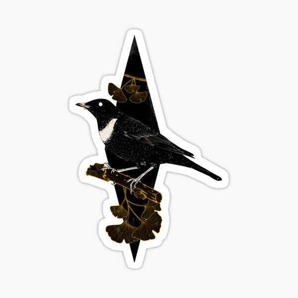 Turdus torquatus Sticker