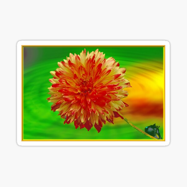 Nature ~ Flower Petals Pink Dew Blooming Rose Pretty ~ Vivid Mouse Pad