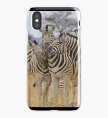 Zebra - African Wildlife Background - Love to Feel iPhone Case/Skin