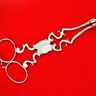 Silver Sugar Scissors by Kawka