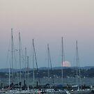 Moon over Lake Maquarie by Judy Woodman