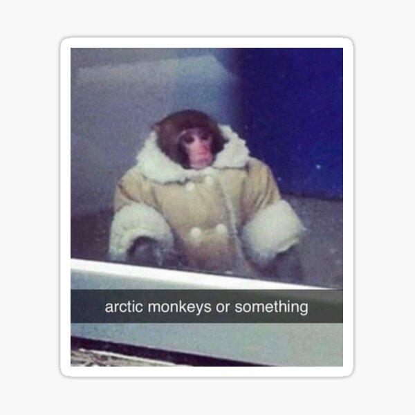 monkey meme Sticker