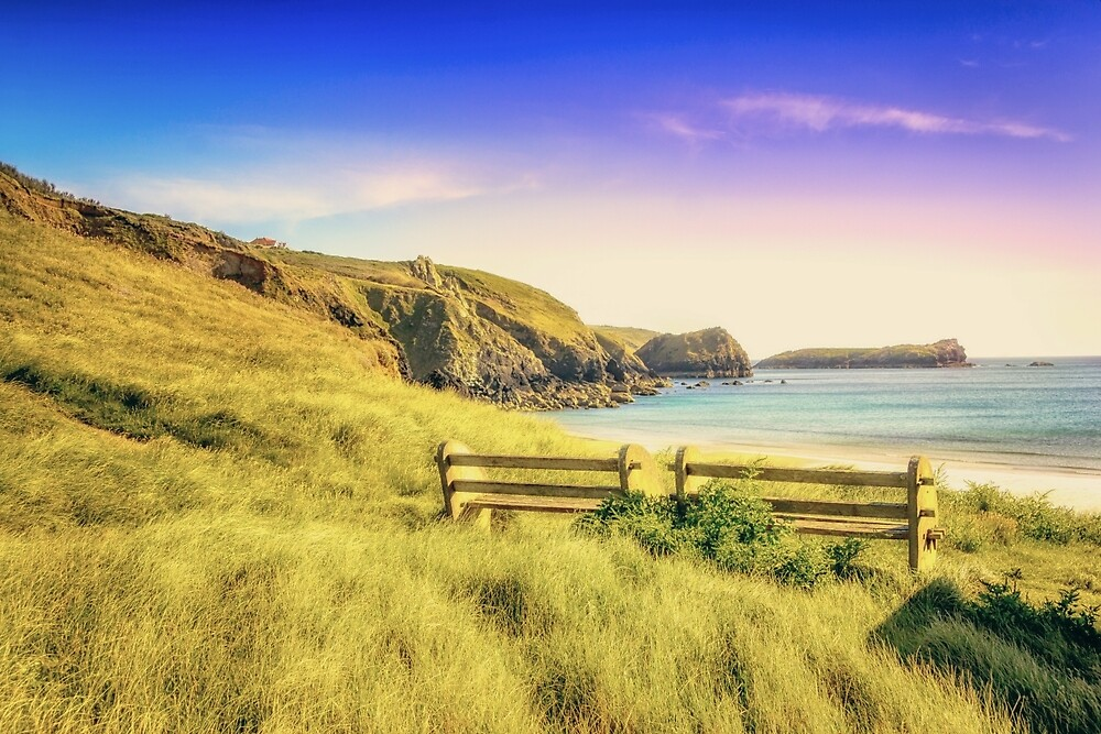 Seat With An Ocean View (TS) by StephenRphoto