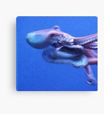 Mysterious Sea Monster Canvas Print