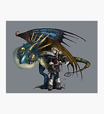 Astrid and Stormfly Photographic Print