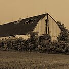 Broken Barn by Mark David Barrington