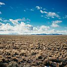 New Mexico by Earl Standerford