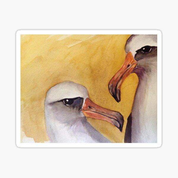 Albatross Pair Sticker