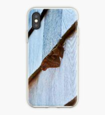 Beautiful Brown Moth iPhone Case