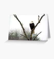 Eagle's Rest Greeting Card
