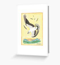 White-bellied Sea-eagle Greeting Card