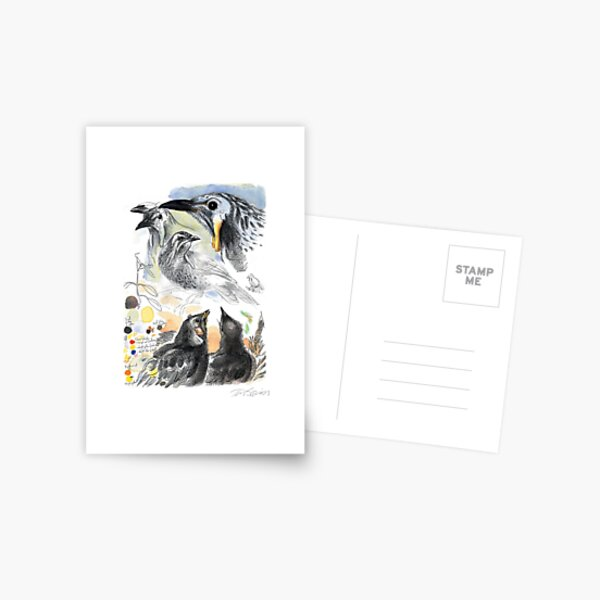 Yellow Wattlebird Postcard