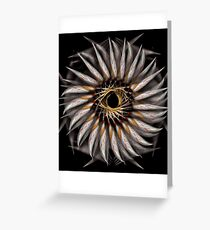 """""""Feathered Flower © Brad Michael Moore 2008"""" Greeting Card"""