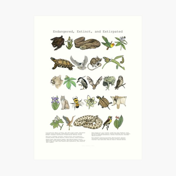 Endangered, Extinct and Extirpated Art Print