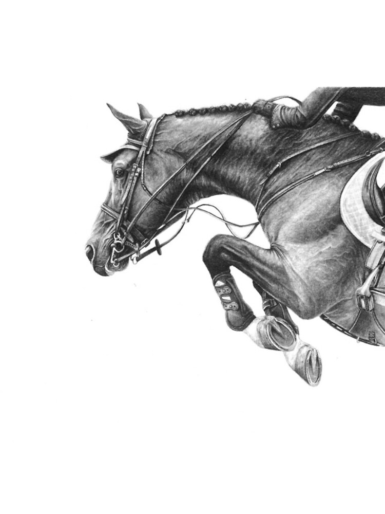 Flick - Showjumping Horse by r-henderson-art