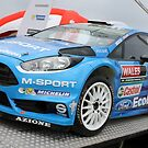 Ford Fiesta ST WRC by Tom Gregory
