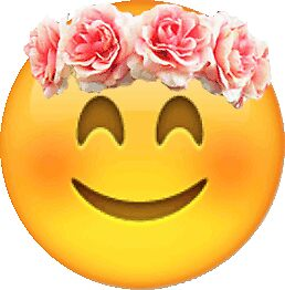 """Emoji Wearing a Flower Crown"" Stickers by Morgan ... Pink Bubble Border"