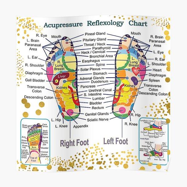 Foot Reflexology Acupressure Spots Map - Therapeutic Massage Ideas Poster