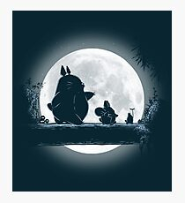 Hakuna Totoro Photographic Print
