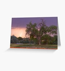 Lightning In The Woods Greeting Card