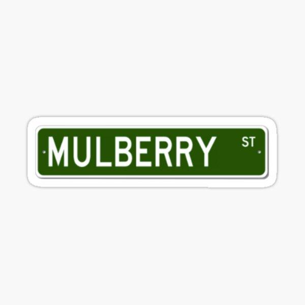 Mulberry Street Road Sign - TØP Sticker