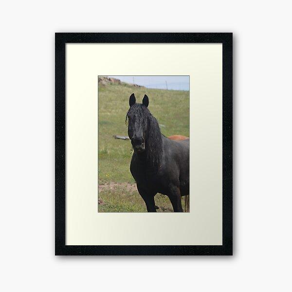 Aribella Framed Art Print