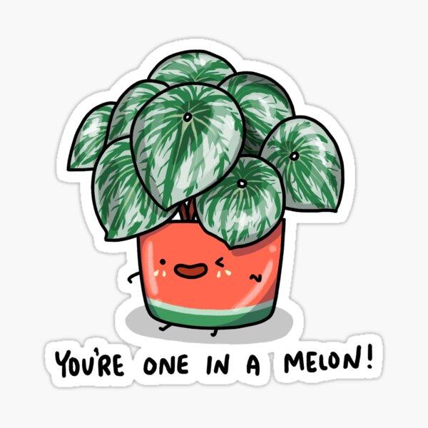 One in a Melon Watermelon Peperomia Plant Sticker