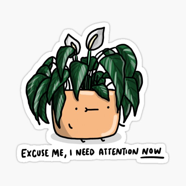 Peace lily looking for attention Sticker