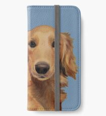 High Five  iPhone Wallet/Case/Skin