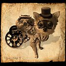 Steampunk Teddy by Pania  Molloy