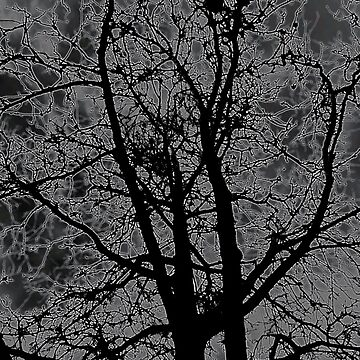 tree in the dark by annieonlee