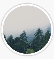 muir woods | mill valley, california Sticker