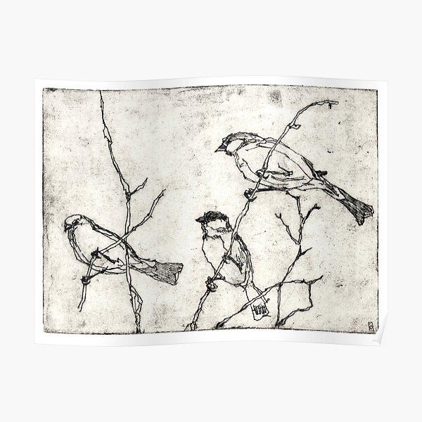 Vögel Radierung Poster