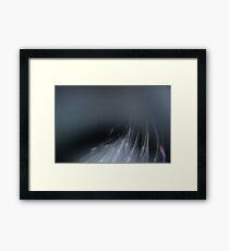 Boreal Framed Print